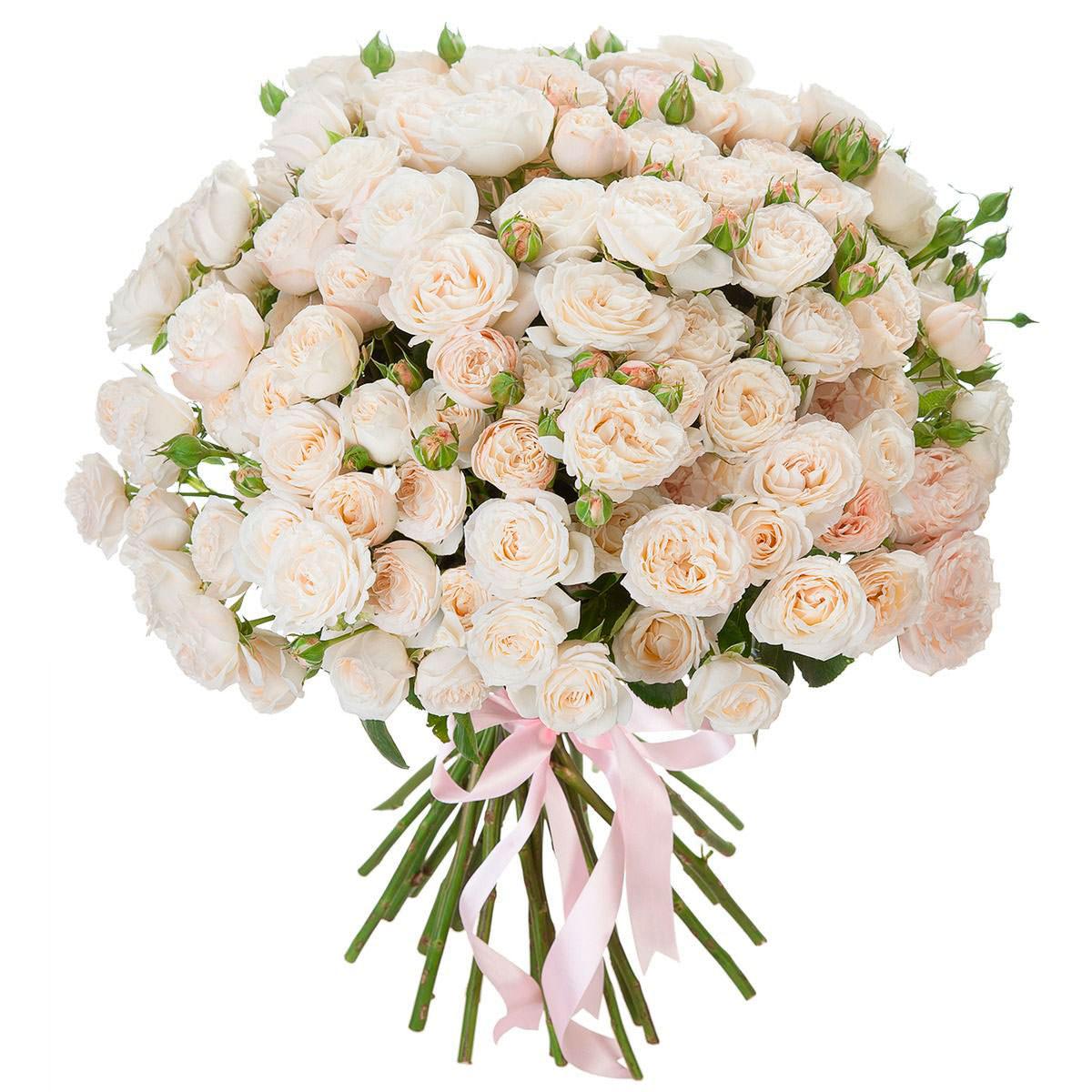 стоит букет из белых и розовых роз картинки выбрать мужские