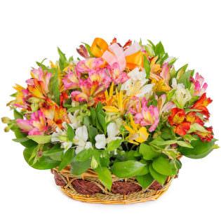 Цветы в корзинке «Краски весны»